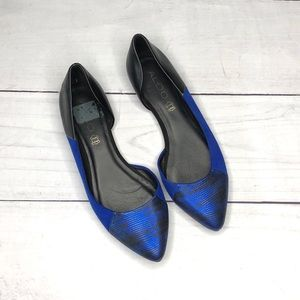 Aldo Pointed Toe Blue & Black Flats, Size 8.5